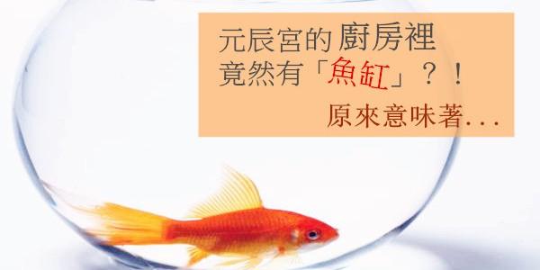 元辰宮的廚房裡竟然有「魚缸」?!原來意味著...